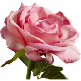 ROSE PINK faux classic English tea rose flower stem